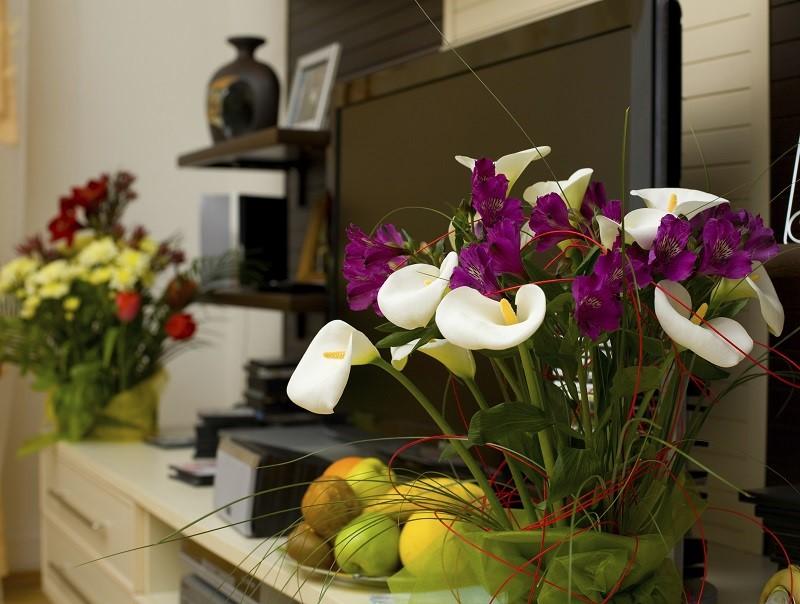 Ev dekorasyonunda i eklerin yeri evhayat for Salon cicek turleri