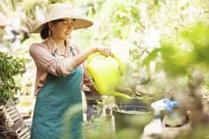 Bahçe İşleri